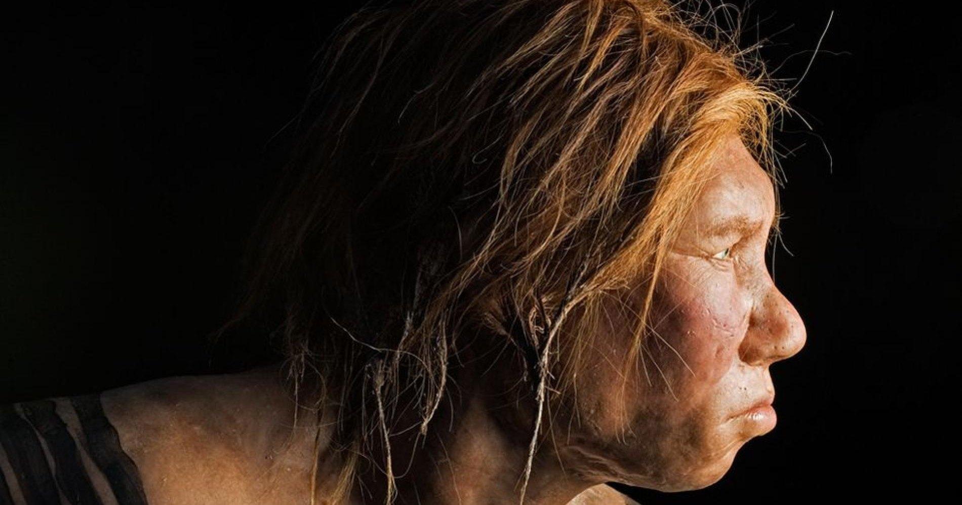 Опровергнута причина исчезновения неандертальцев