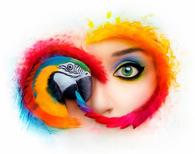 Adobe допустила утечку сведений об учетных записях почти 7,5 млн пользователей Creative Cloud