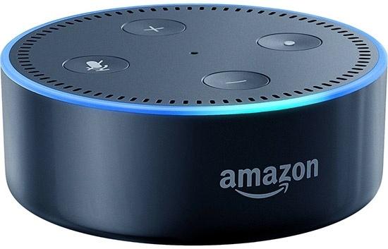 Голосовые записи с умных колонок Echo Dot станут уликой в деле об убийстве