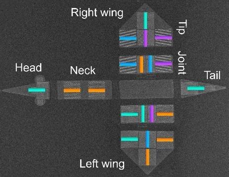Созданы микророботы, парящие в магнитных полях