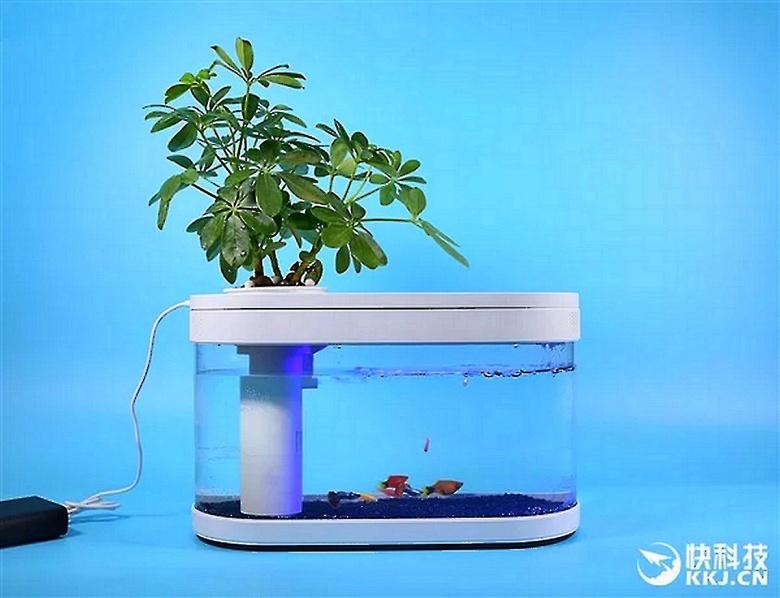 Представлен необычный аквариум Xiaomi Fish Tank