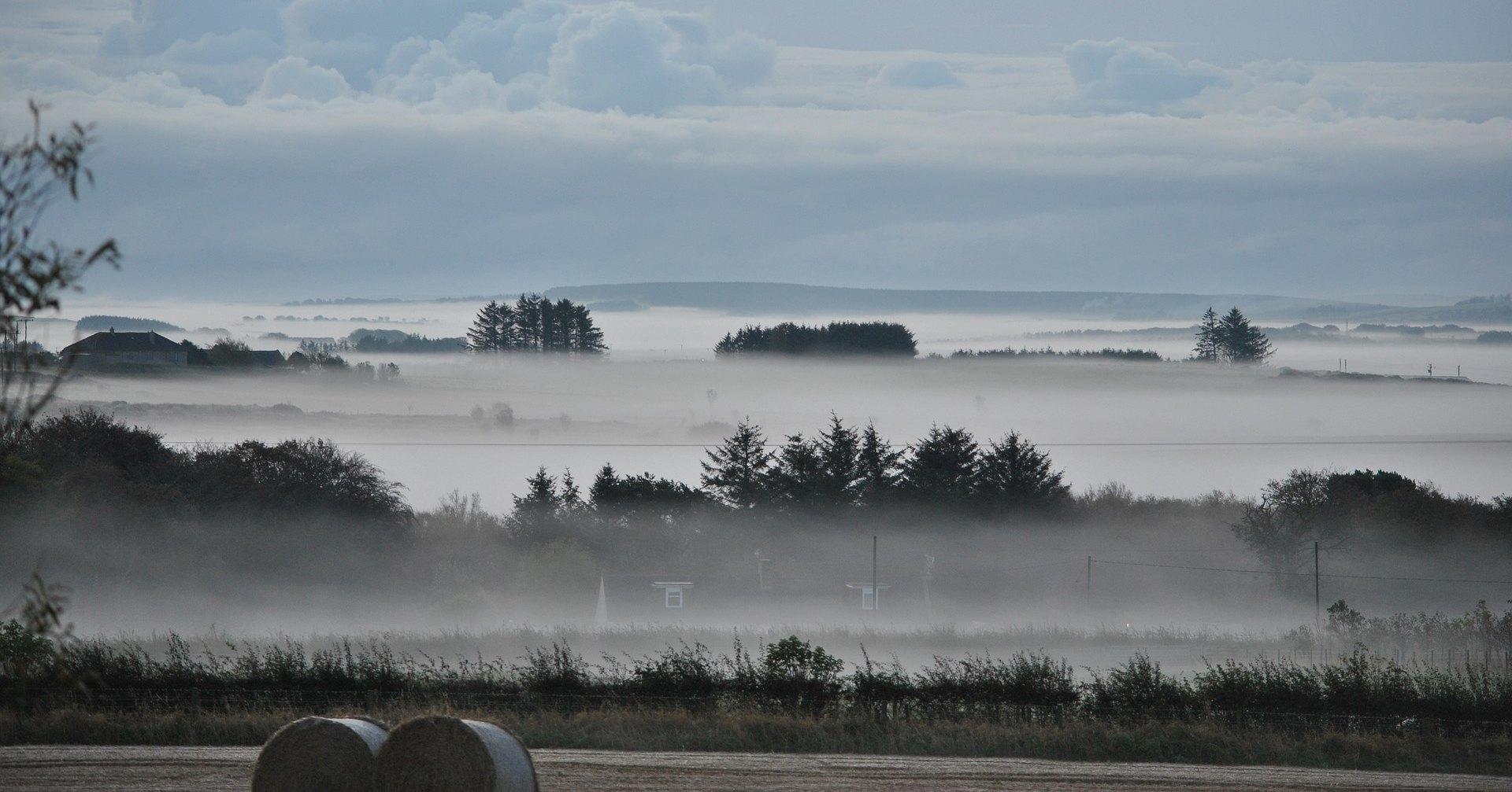 Город в Карелии накрыл убивающий птиц желтый туман