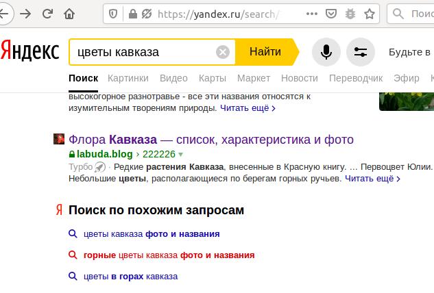 Частное мнение о Яндекс.Турбо - 3