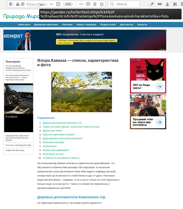 Частное мнение о Яндекс.Турбо - 4