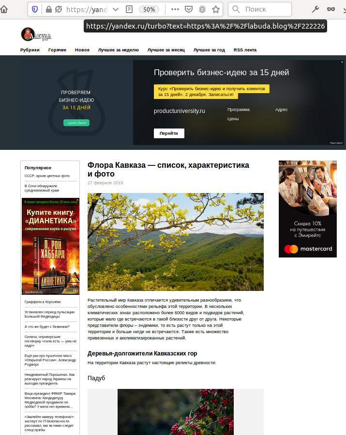 Частное мнение о Яндекс.Турбо - 5