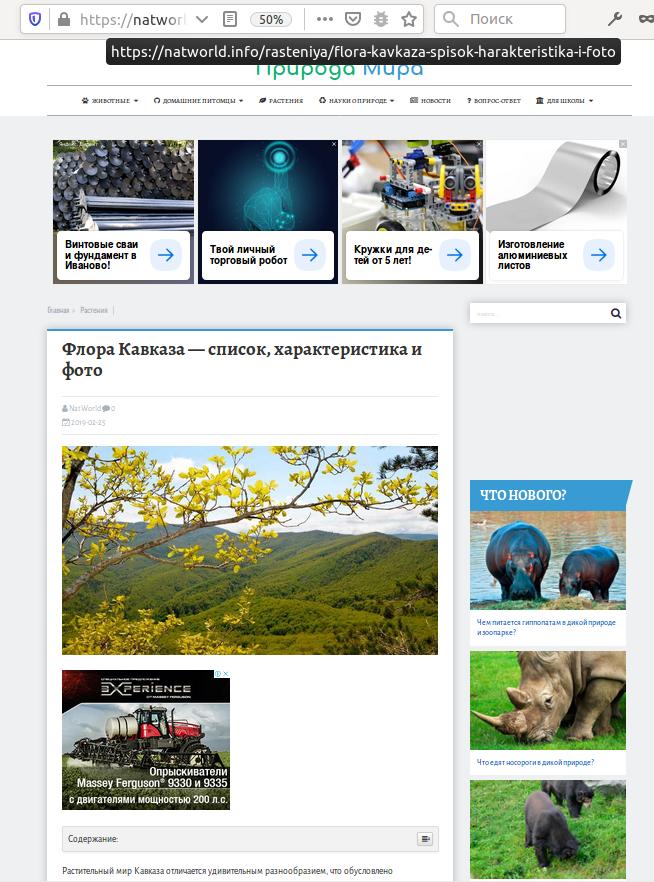Частное мнение о Яндекс.Турбо - 7