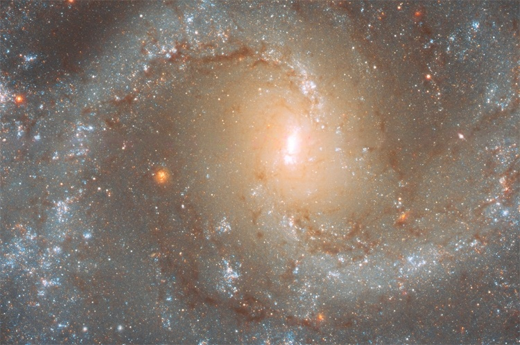 Фото дня: обитель сверхновых звёзд