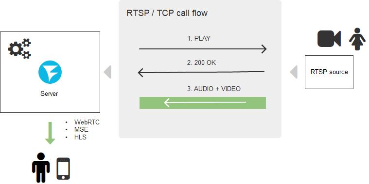 Как готовить RTSP на сайте в 2020 году, или почему кабаны не успеют убежать - 6