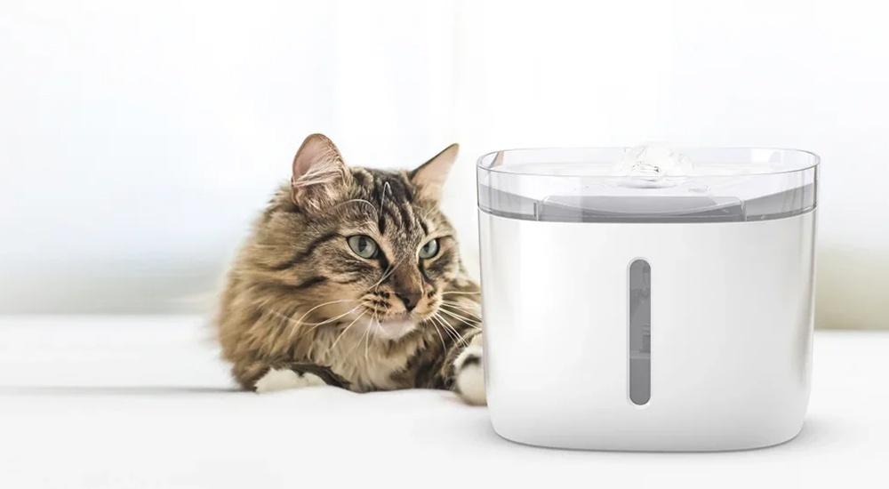 Кота и пса накормит робот - 23
