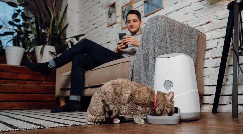 Кота и пса накормит робот - 5