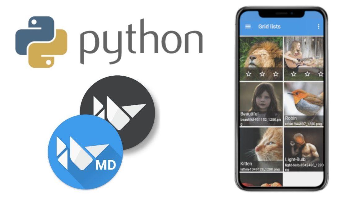 Разработка мобильных приложений на Python. Библиотека KivyMD - 1