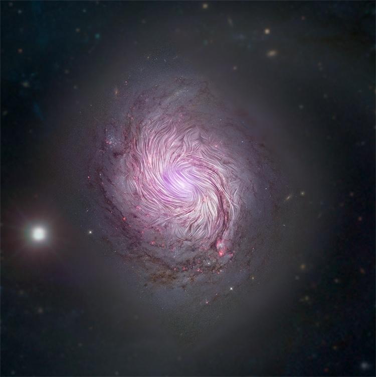 Фото дня: магнитная сущность спиральной галактики