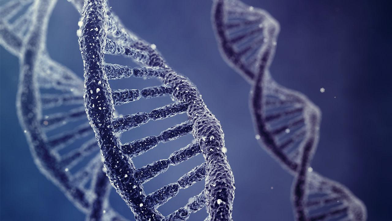 Гарвардский генетик разрабатывает прототип приложения для знакомств с анализом ДНК - 2