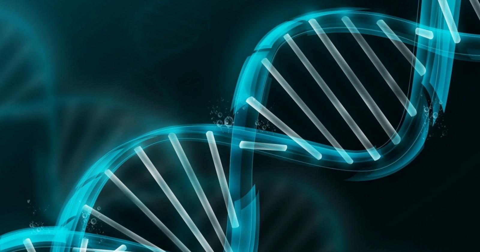 Гарвардский генетик создаст программу для знакомств по ДНК