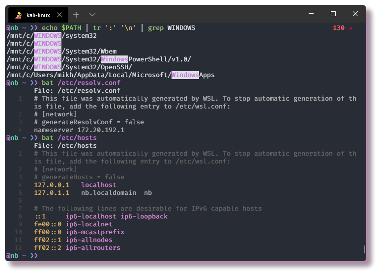 Настройка окружения в CLI. WSL - Windows Terminal - 5