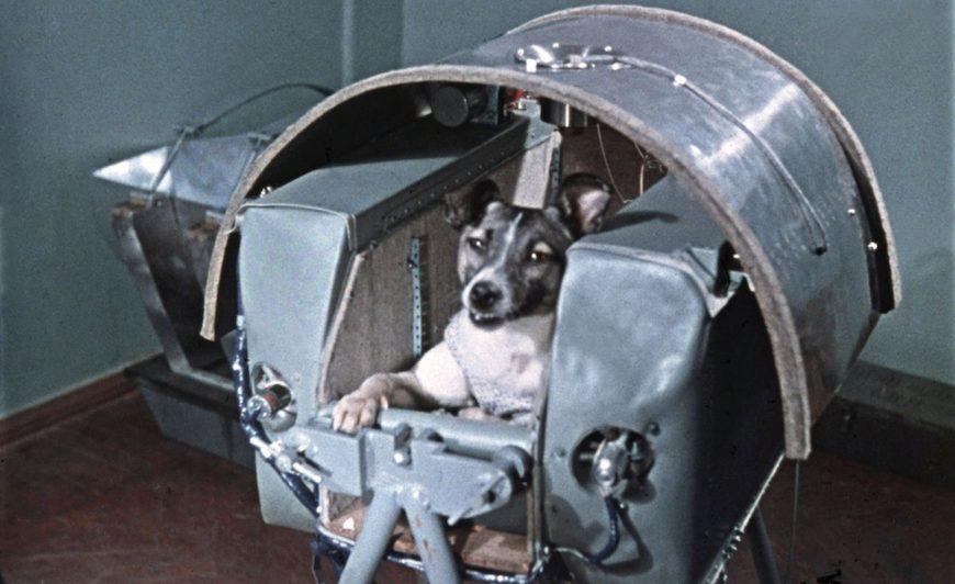 Борьба за покорение космоса — триллер времен холодной войны - 11