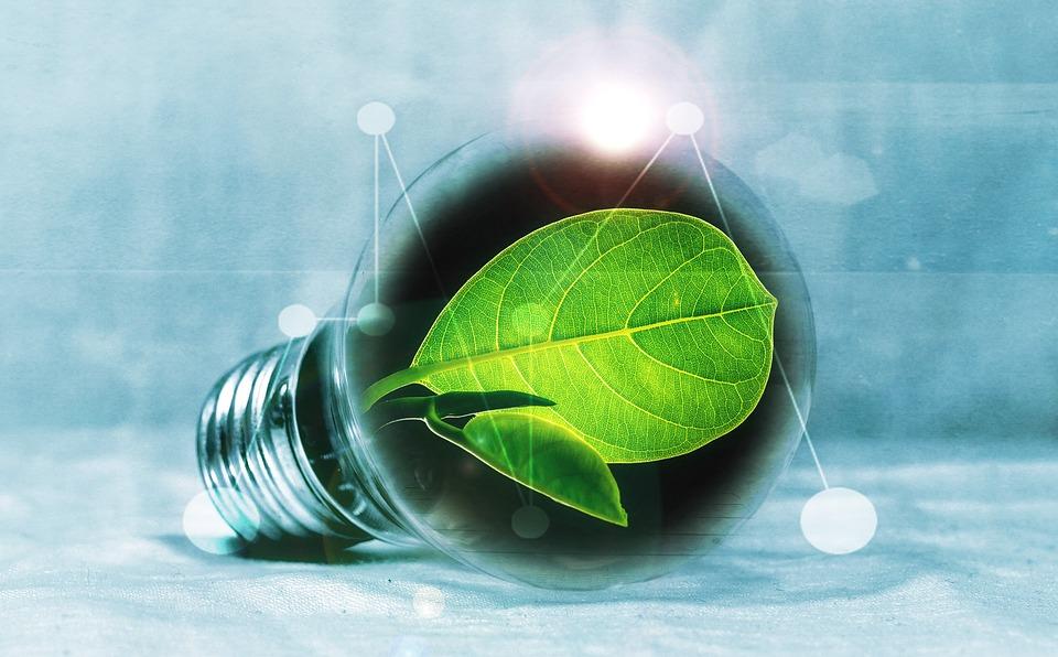 Почему у «зелёной» энергетики сложное будущее? - 1