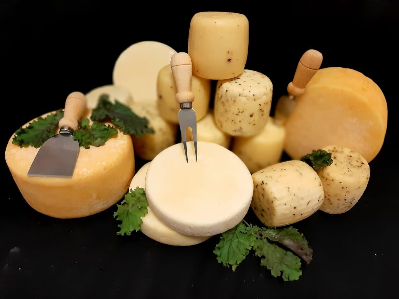 Поговорим о… сыре? - 2