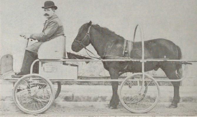 Гужевой транспорт 21 века - 14