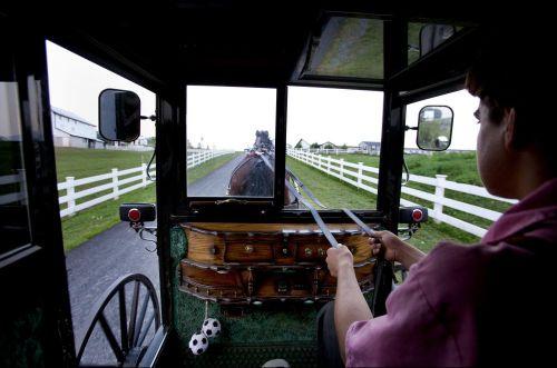 Гужевой транспорт 21 века - 8