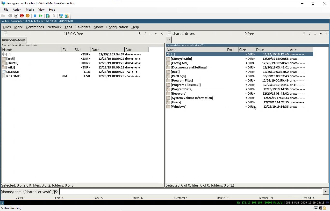 Проброшенное внутрь VM содержимое диска C