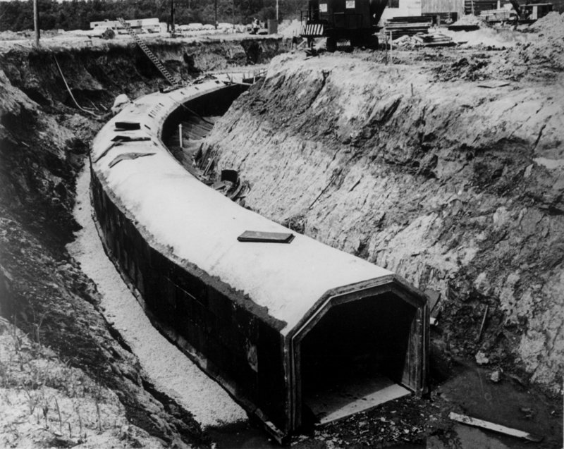 Как американцы живого хорька в коллайдер засунули - 2