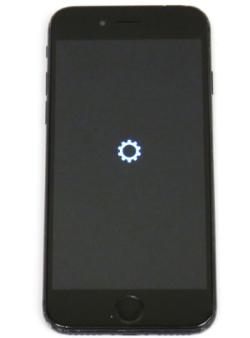 Играем с огнем: запускаем произвольный код на девелоперском iPhone 7 - 6