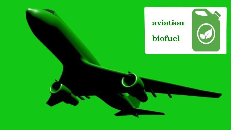 Перспективы биотоплива в авиации - 1