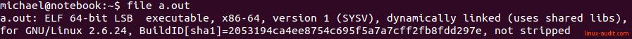 Введение в ELF-файлы в Linux: понимание и анализ - 2