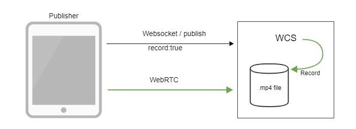 Обзор WCS 5.2 — WebRTC сервера для веб-разработчиков онлайн трансляций и видеочатов - 14