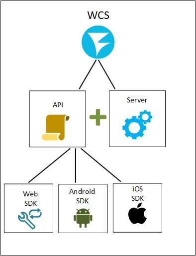 Обзор WCS 5.2 — WebRTC сервера для веб-разработчиков онлайн трансляций и видеочатов - 3