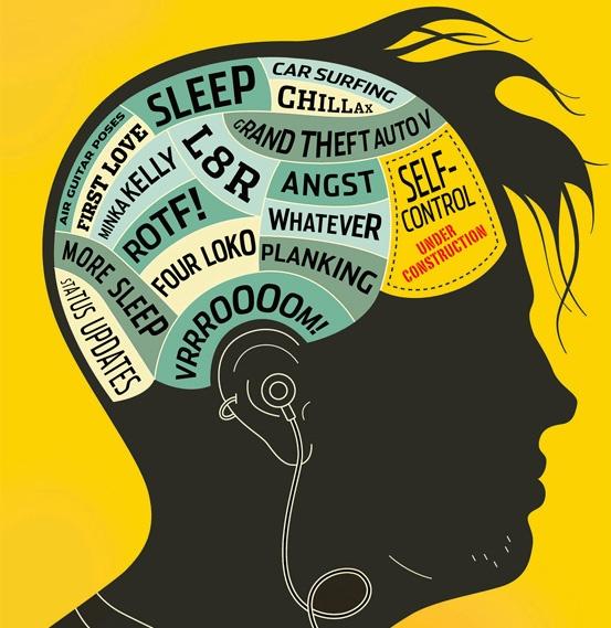 Юношеский максимализм и дух противоречия у подростков с точки зрения нейрологии - 1