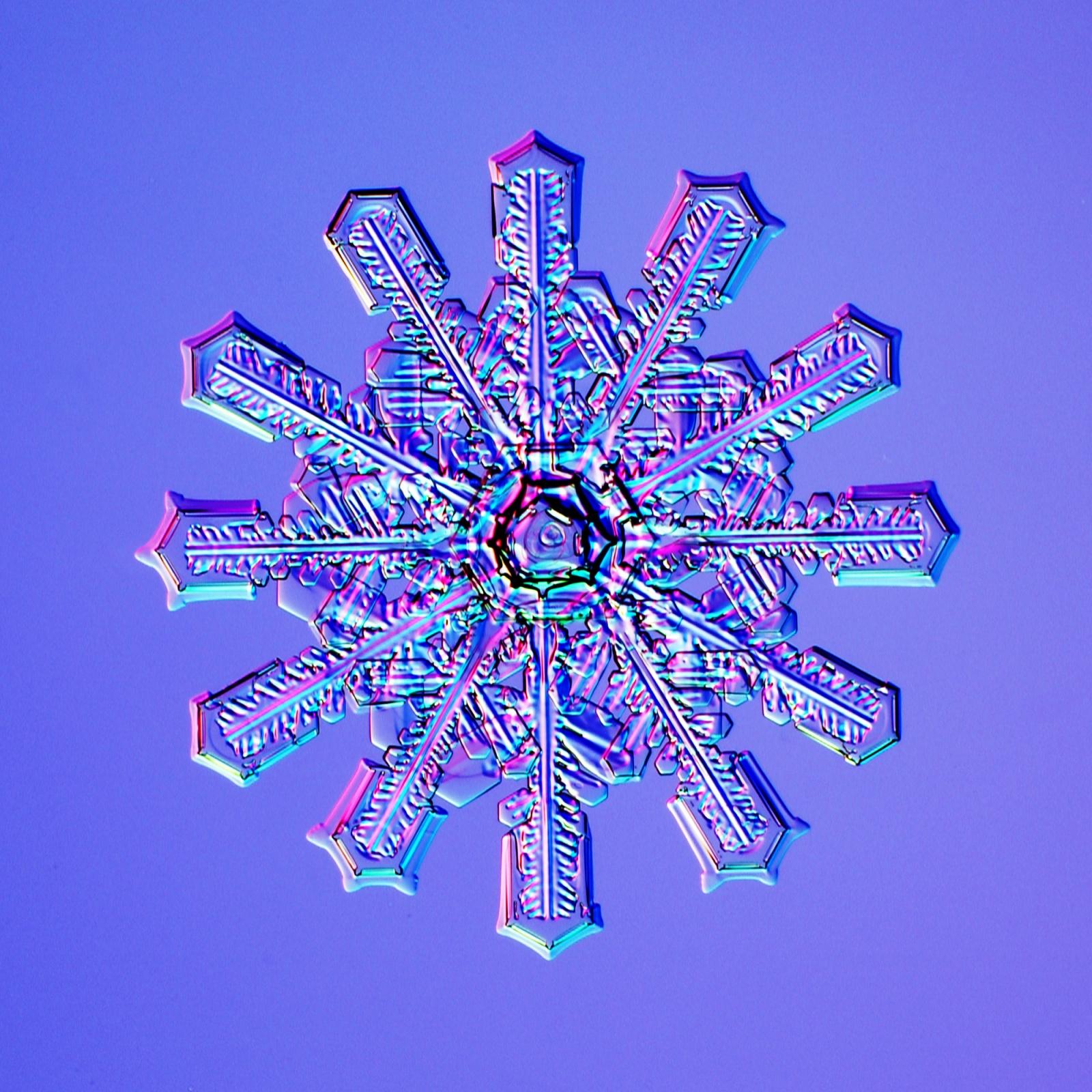 Великая теория снежинок - 5