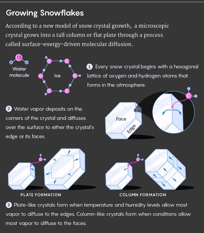 Великая теория снежинок - 8