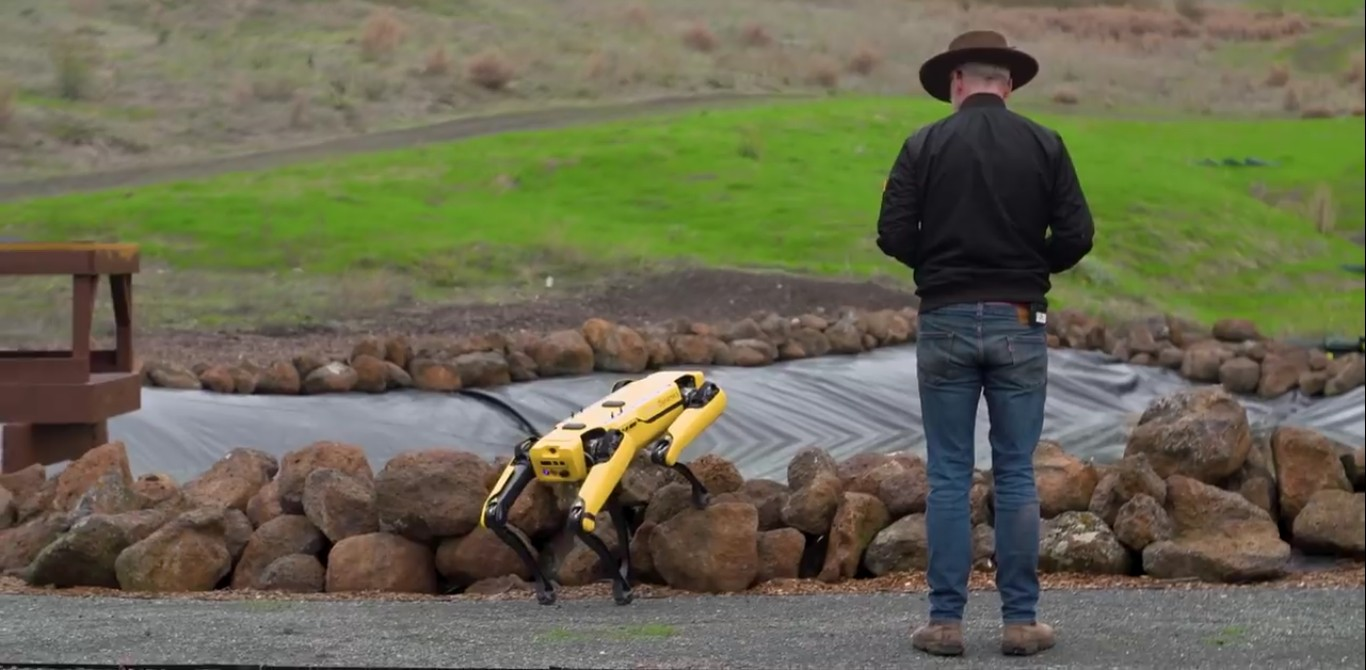 Адам Севидж начал годовое тестирование робота Boston Dynamics Spot на YouTube-канале Tested - 10