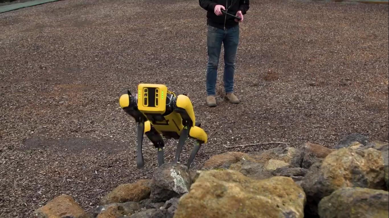 Адам Севидж начал годовое тестирование робота Boston Dynamics Spot на YouTube-канале Tested - 11