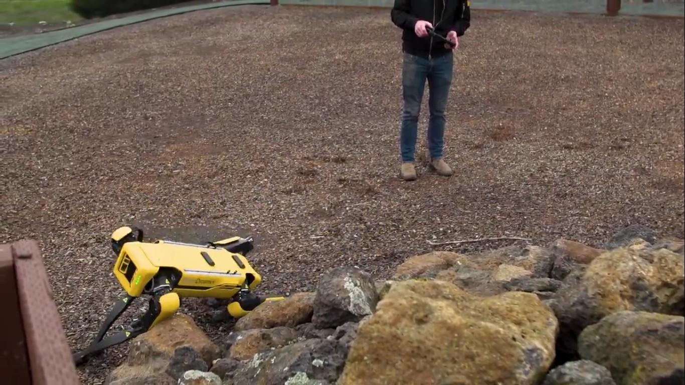 Адам Севидж начал годовое тестирование робота Boston Dynamics Spot на YouTube-канале Tested - 12