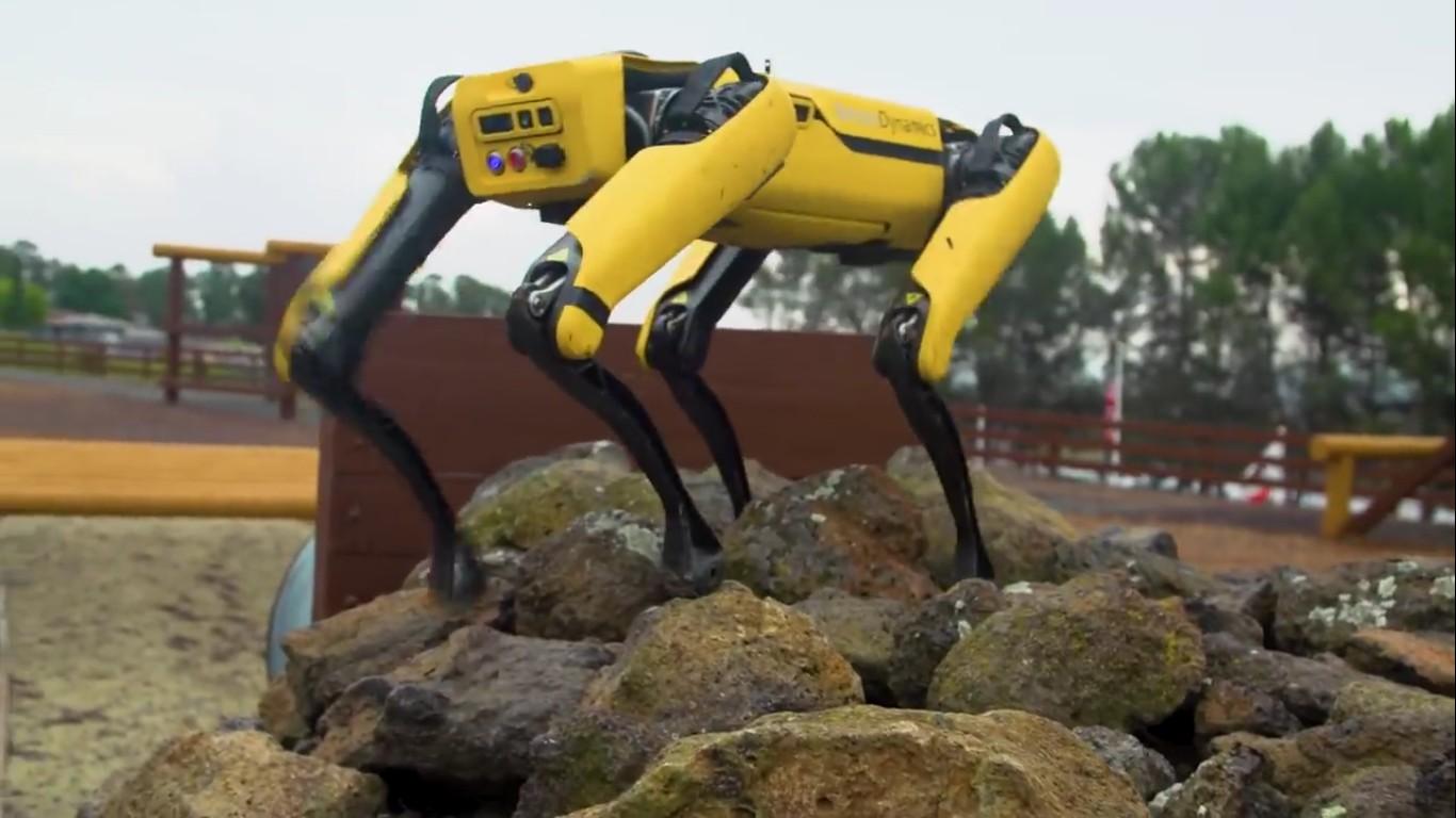 Адам Севидж начал годовое тестирование робота Boston Dynamics Spot на YouTube-канале Tested - 14