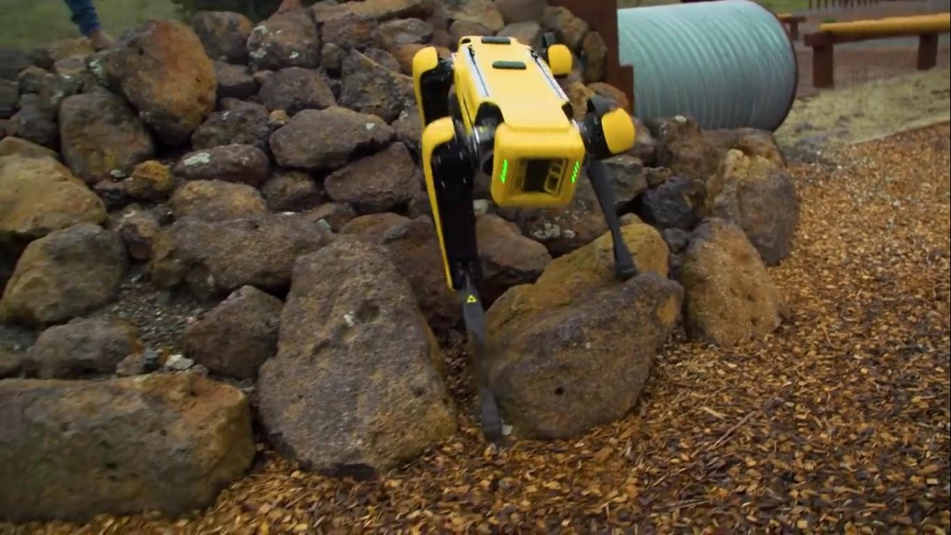 Адам Севидж начал годовое тестирование робота Boston Dynamics Spot на YouTube-канале Tested - 16
