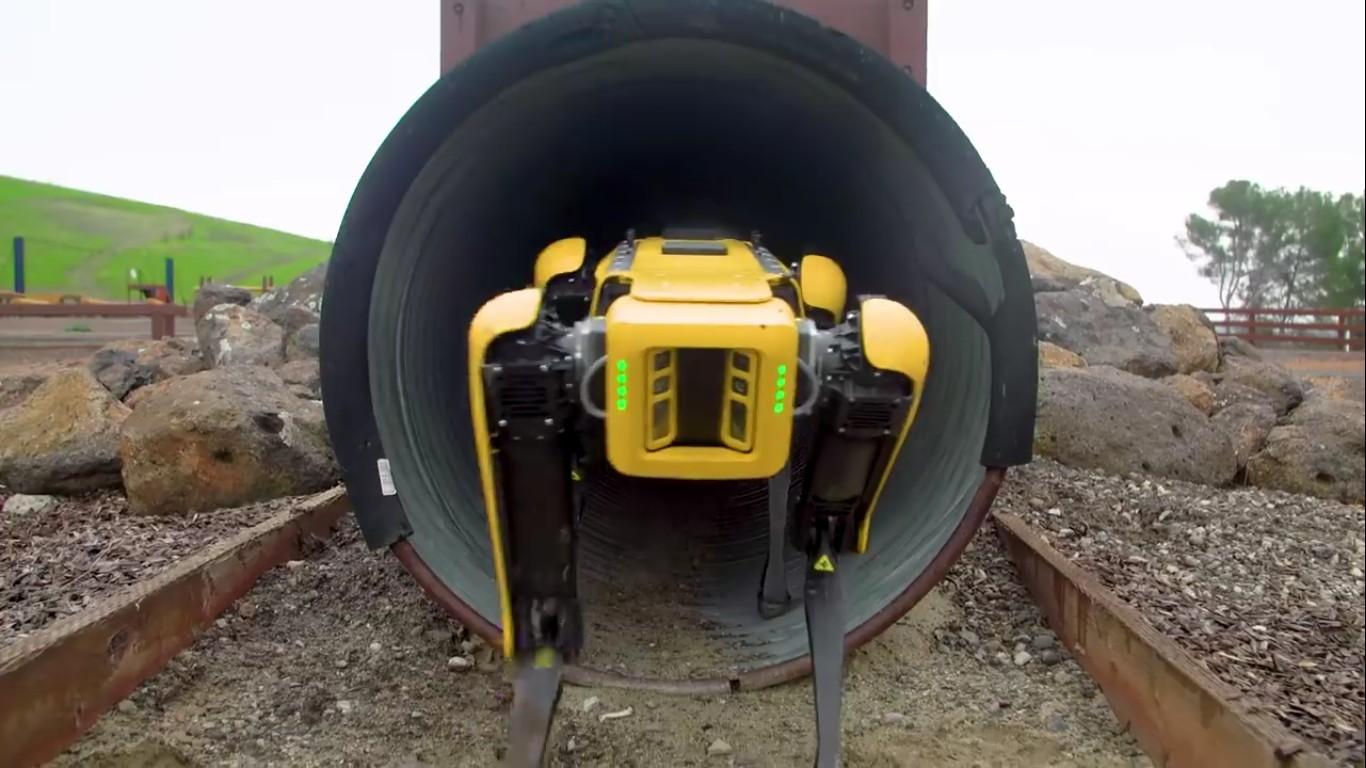 Адам Севидж начал годовое тестирование робота Boston Dynamics Spot на YouTube-канале Tested - 18