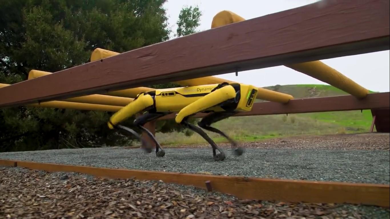 Адам Севидж начал годовое тестирование робота Boston Dynamics Spot на YouTube-канале Tested - 20