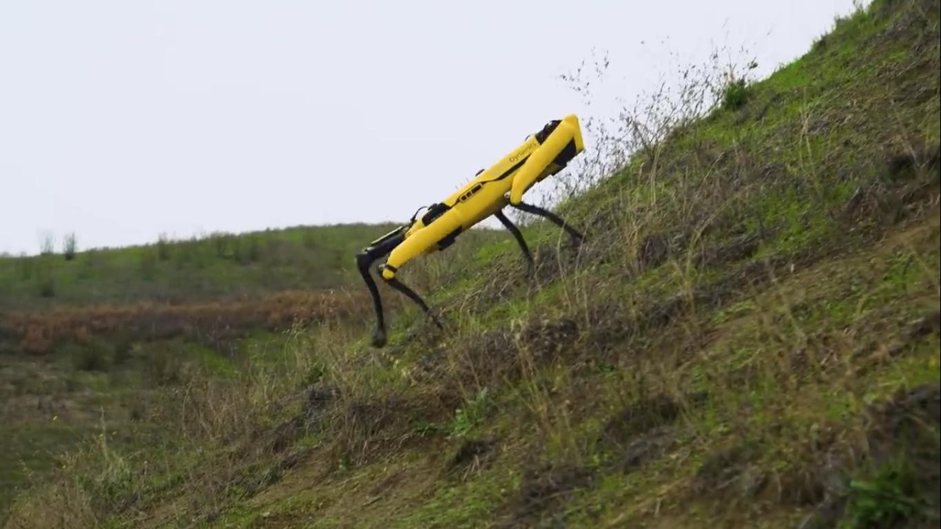 Адам Севидж начал годовое тестирование робота Boston Dynamics Spot на YouTube-канале Tested - 25