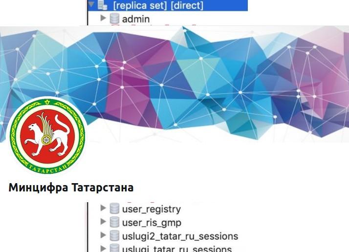 Минцифра Татарстана: в открытом доступе оказался «небольшой» объем данных пользователей госуслуг - 1