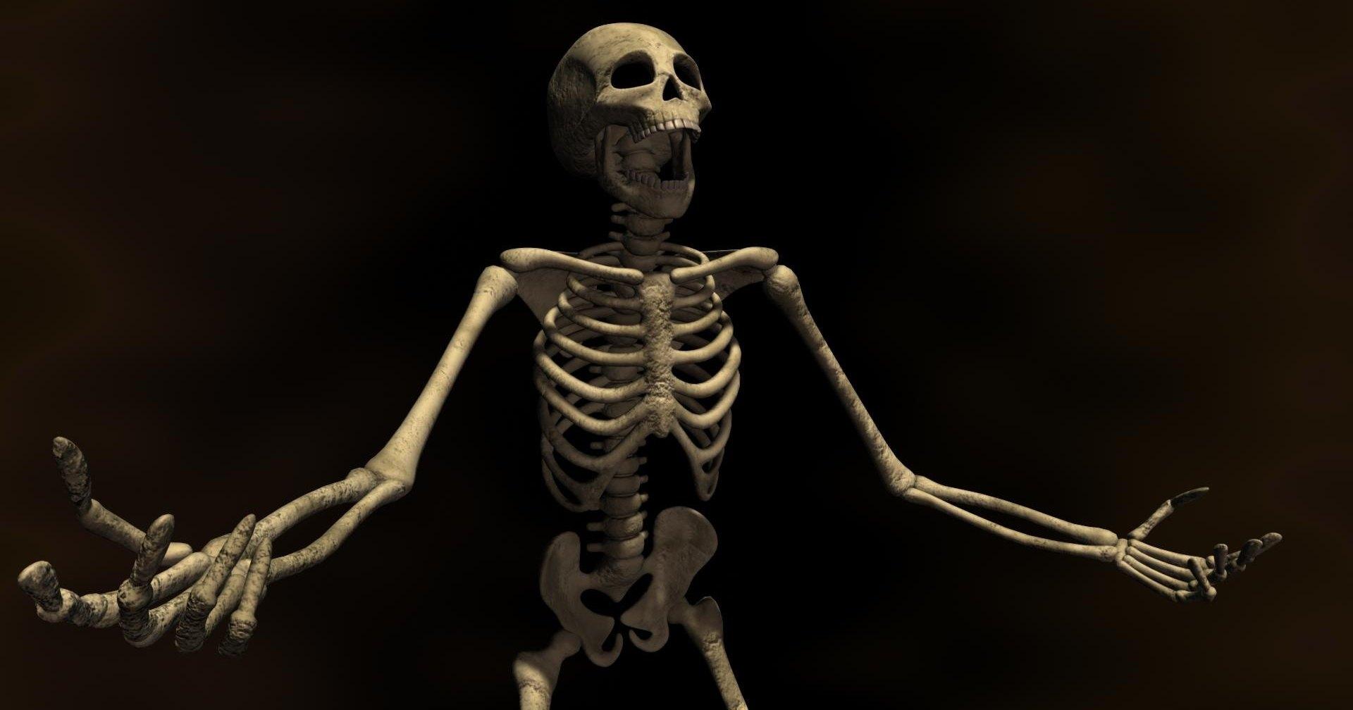 Американец оштрафован за езду при помощи скелета