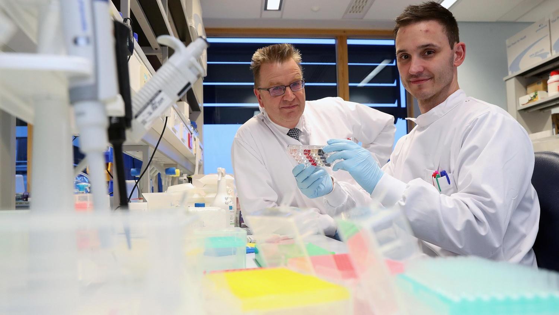 Учёные нашли T-клетки, открывающие перспективы универсальной противораковой иммунной терапии - 1