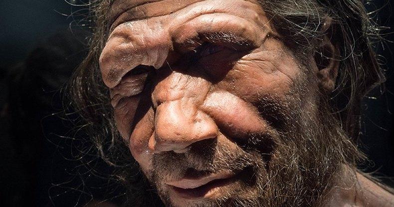 В геноме африканцев найдены гены неандертальцев: тайны прошлого