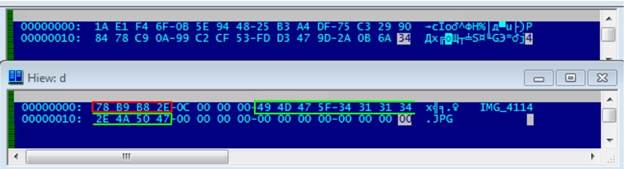 Wulfric Ransomware – шифровальщик, которого нет - 11