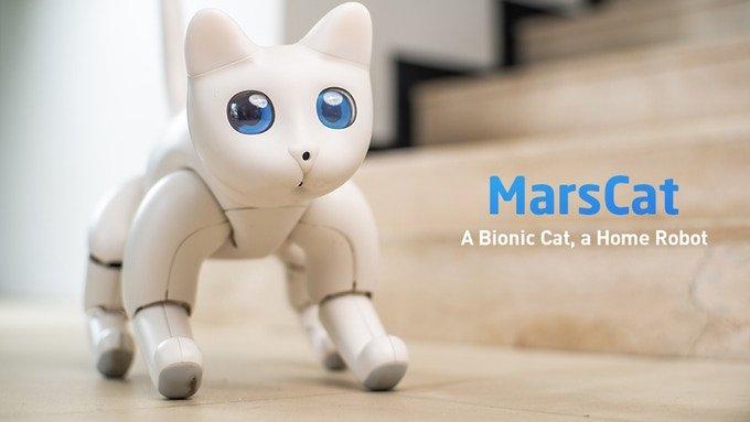 На выпуск робота-кота MarsCat собрано почти в десять раз больше средств, чем было намечено