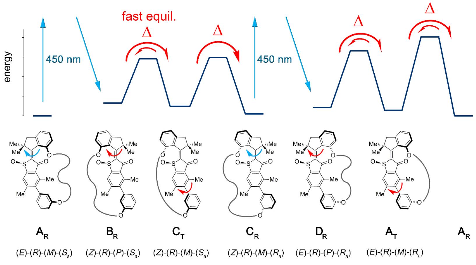Синхронное фуэте: биологические моторы в нанотехнологиях - 3