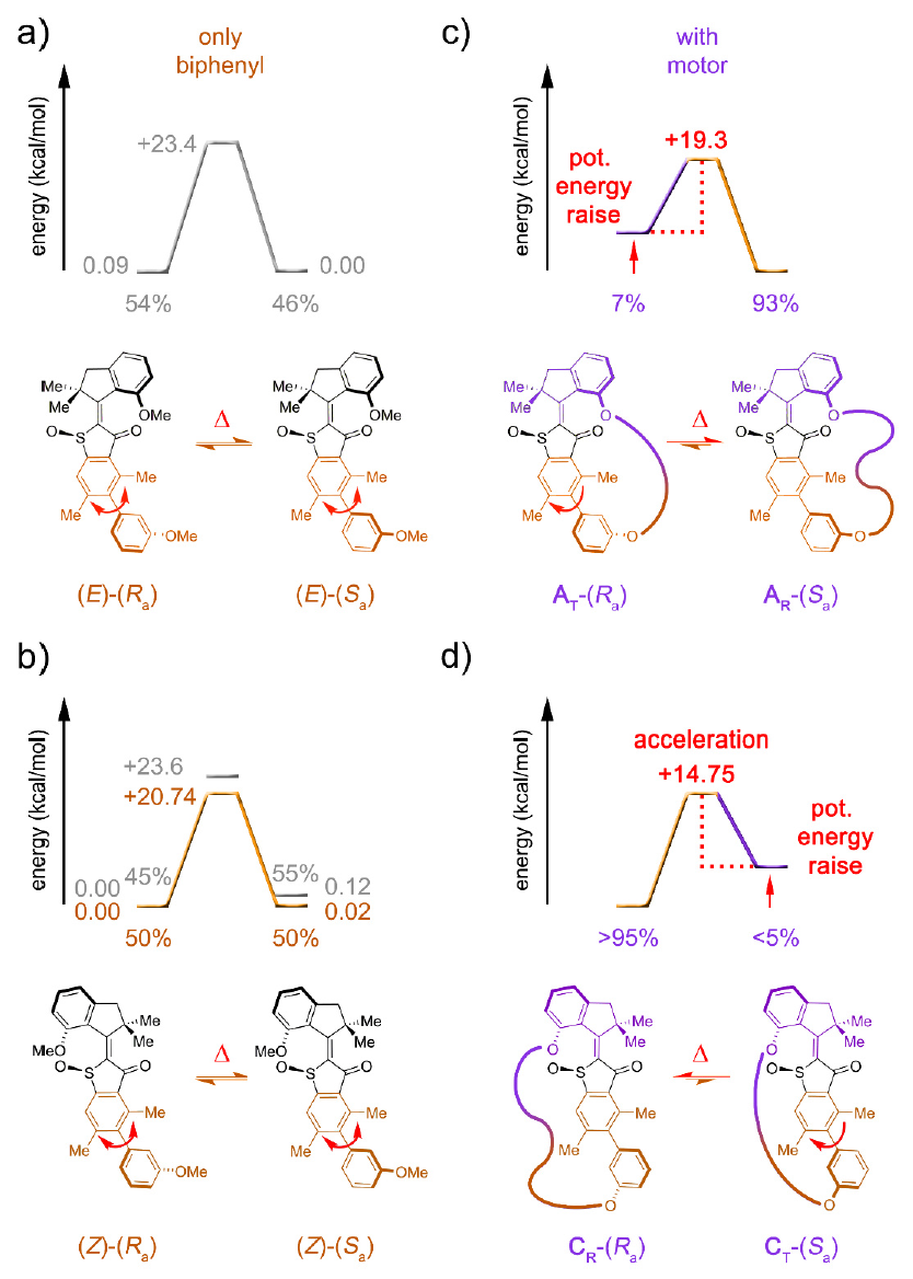 Синхронное фуэте: биологические моторы в нанотехнологиях - 7
